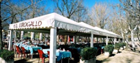 El urogallo for Restaurantes casa de campo